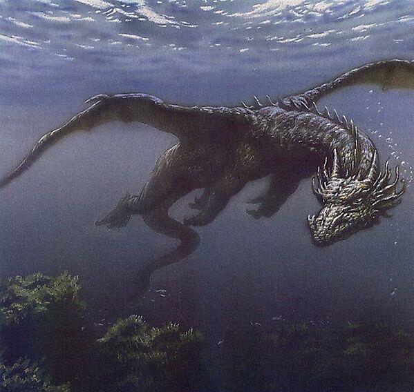 dragons14