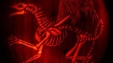 Скелет дракона