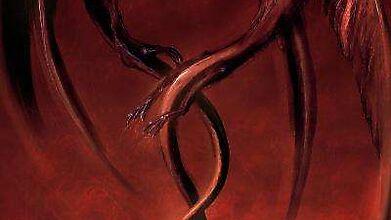 Драконы, настигнутые любовью