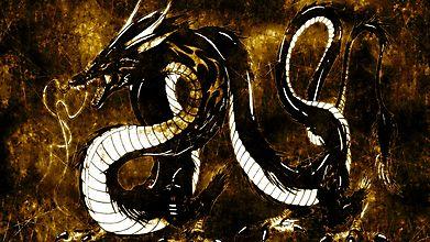 Чёрно-белый дракон как живое воплощение ДАО