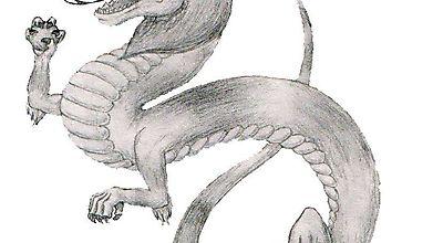 Взрослый дракон играется мячиком