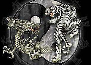 ДАО тигра и дракона
